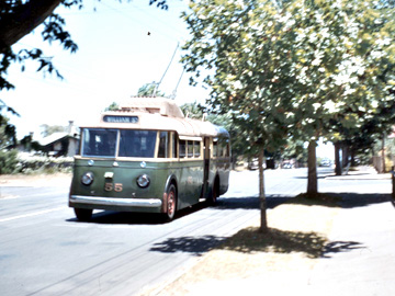 Perth Trolleybus 55